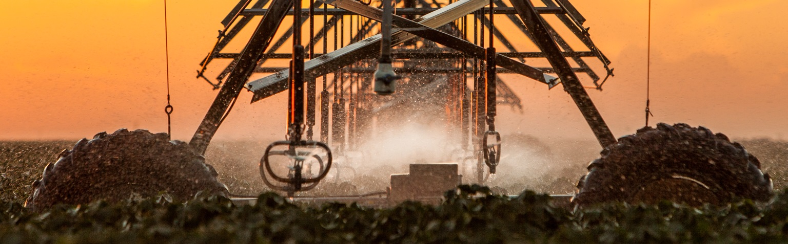 Watering cotton field